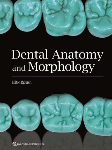 Dental Anatomy and Morphology